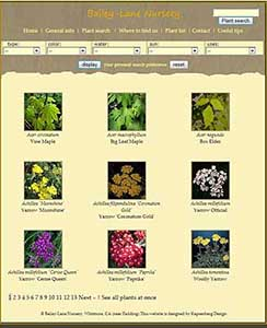 Searcg page of Bailey Lane Nursery